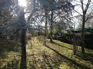 Foto - Terreno agricolo in Vendita a Gradisca d'Isonzo