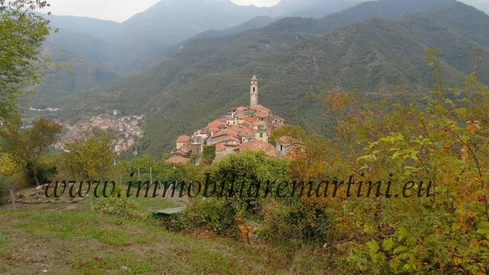 foto  Rustico / Casale, ottimo stato, 100 mq, Castel Vittorio