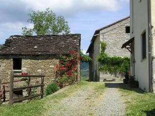 Foto - Rustico / Casale Località Chiesa frazione San Pietro, Borgo Val di Taro