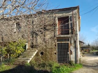 Foto - Casale via Tore, Castelvenere