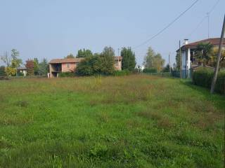 Foto - Terreno edificabile residenziale a Dolo