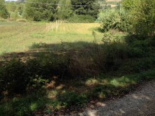Foto - Terreno agricolo in Vendita a Gemmano