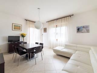 Foto - Appartamento 115 mq, Belvedere Ostrense
