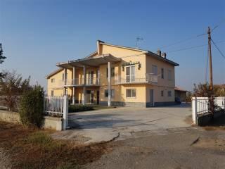 Foto - Casa indipendente 370 mq, Borgo San Martino