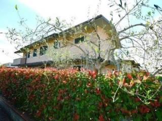 Foto - Villa via Pacconi, Porcari Rughi, Porcari