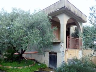 Foto - Villa Strada Comunale Torre Amalfitano, Bagheria