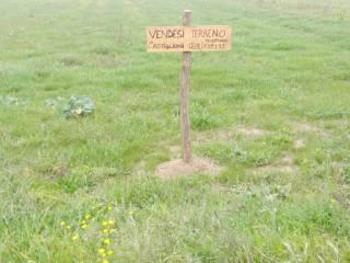Foto - Terreno agricolo in Vendita a Locate Varesino