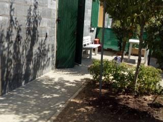 Foto - Monolocale buono stato, piano terra, Castelnovo di Sotto