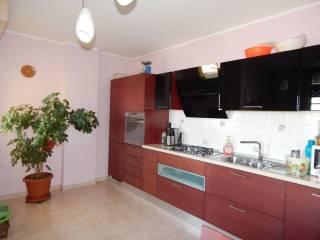 Foto - Appartamento nuovo, quarto piano, Termoli