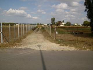 Foto - Terreno edificabile industriale a Ginosa
