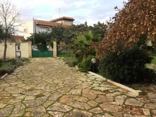 Foto - Villa via Lecce 3, Torre Lapillo, Porto Cesareo