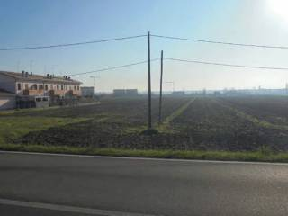 Foto - Terreno agricolo in asta a Molinella