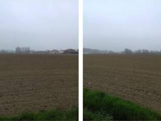 Foto - Terreno agricolo in asta a Vigarano Mainarda