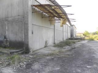 Foto - Quadrilocale all'asta via Luchino Luchini San c., San Giorgio della Richinvelda