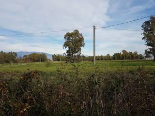 Foto - Terreno agricolo in Vendita a Sabaudia