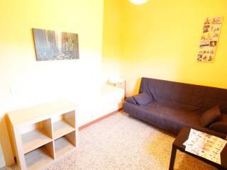 Foto - Casa indipendente Strada Provinciale del Morianese, Camaiore, Lucca