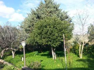 Foto - Villa Contrada Scozzari, Bolognetta