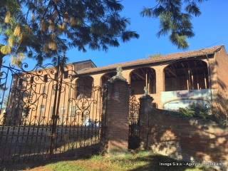 Foto - Rustico / Casale, da ristrutturare, 450 mq, Altavilla Monferrato