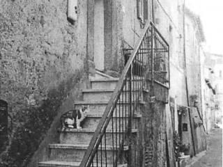Foto - Quadrilocale all'asta via Borgo San Filippo, Bassano Romano