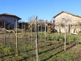 Foto - Terreno edificabile residenziale a San Canzian d'Isonzo