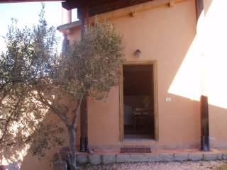 Foto - Rustico / Casale via della Villa, Gualdo Cattaneo