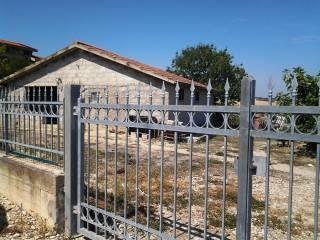 Foto - Rustico / Casale, da ristrutturare, 1130 mq, Roseto degli Abruzzi