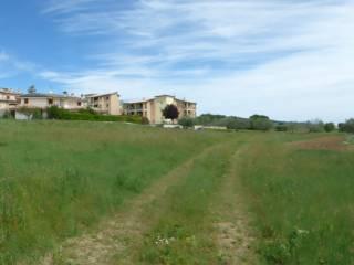 Foto - Terreno edificabile residenziale a Rapagnano