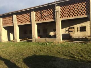 Foto - Rustico / Casale Strada Santa Maria Colomba, Goito