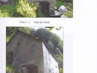 Foto - Rustico / Casale Strada Comunale per Spoccia, Cavaglio-Spoccia