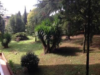 Foto - Appartamento via Camillo Iacobini, Tufello, Roma