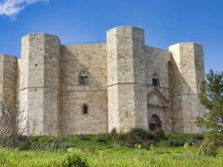 Foto - Rustico / Casale SP234a, Castel Del Monte, Andria
