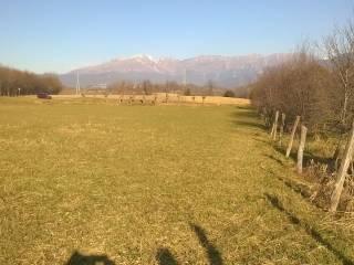 Foto - Terreno agricolo in Vendita a Reana del Rojale