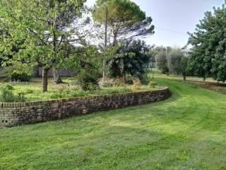 Foto - Rustico / Casale via Dante Alighieri, Castelfidardo