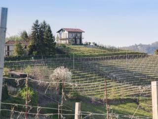 Foto - Rustico / Casale Località Vincenzo, Monteu Roero