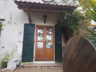 Foto - Appartamento Località Germano, Rosignano Marittimo