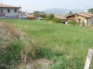 Foto - Terreno agricolo in Vendita a Monteforte d'Alpone