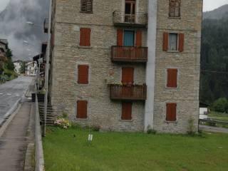 Foto - Trilocale Strada Statale Carnica, Pelos Di Cadore, Vigo di Cadore