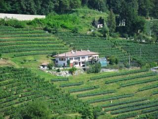 Foto - Rustico / Casale via San Sebastiano 20, Ramandolo, Nimis