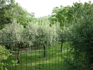 Foto - Appartamento via Roma, Ripe San Ginesio