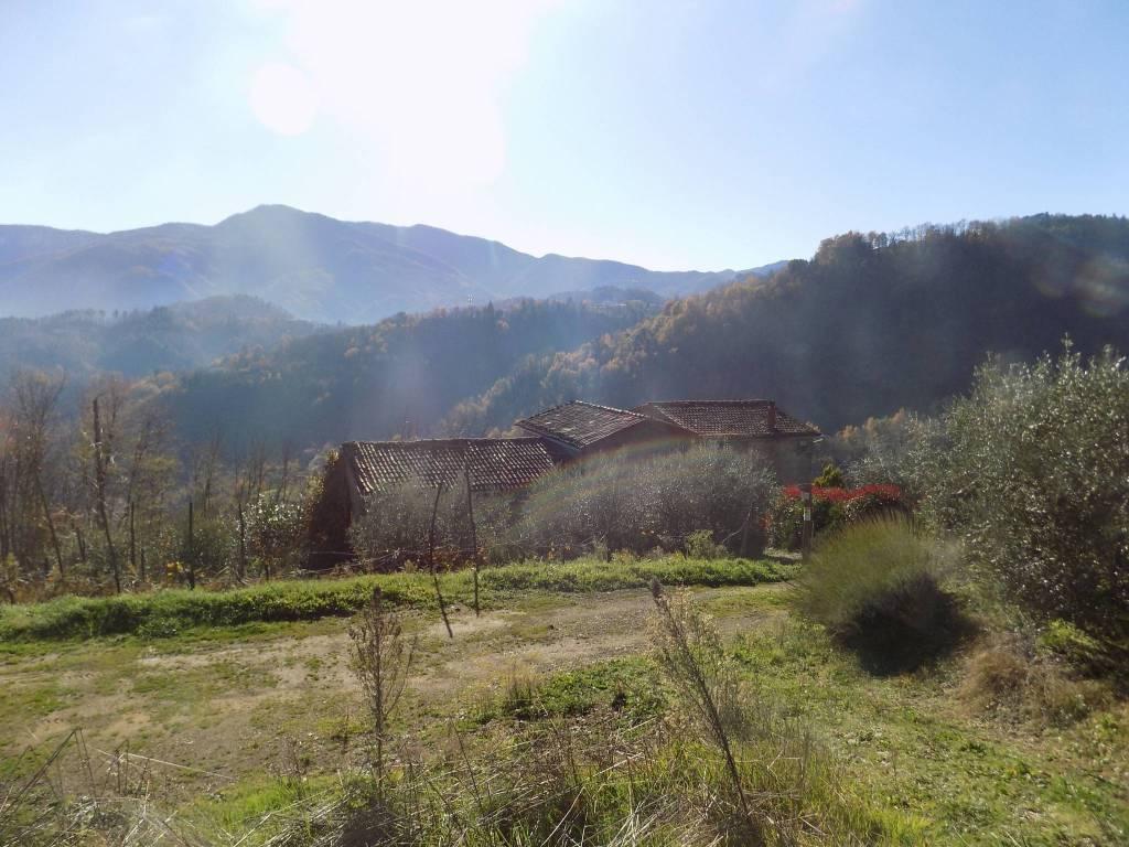 foto  Rustico / Casale, da ristrutturare, 215 mq, Molazzana
