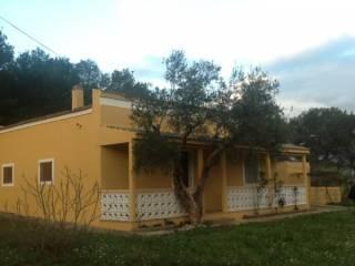 Foto - Rustico / Casale Strada Comunale Esterna Confine Difesa, Santeramo in Colle