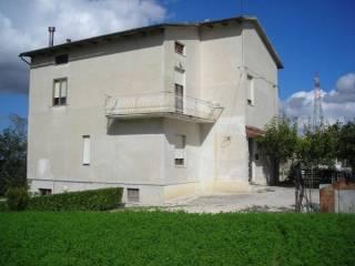 Foto - Rustico / Casale, buono stato, 520 mq, Borgo San Lorenzo, Loro Piceno