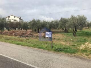 Foto - Terreno edificabile residenziale a Mozzagrogna