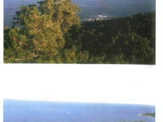 Foto - Terreno edificabile residenziale a Santa Teresa Gallura