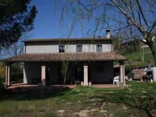 Foto - Rustico / Casale via Stornite 600, Borello, Cesena