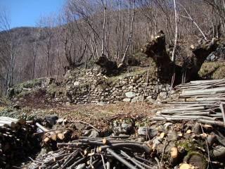 Foto - Terreno edificabile residenziale a Piedimulera