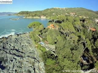 Foto - Villa, ottimo stato, 400 mq, Tellaro, Lerici