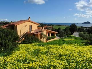 Foto - Villa Località Peonia Rosa, Capo Sperone, Sant'Antioco