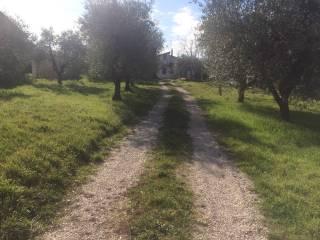 Foto - Villa via San Pietro, San Pietro, Ari