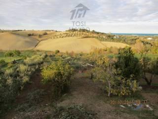 Foto - Terreno agricolo in Vendita a Misano Adriatico